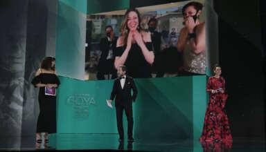 Palmarés 35 Premios Goya